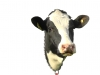 number-one-cow-head